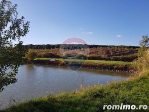 Vila pe un domeniu de 6 hectare in Sauaieu/Bihor - imagine 16