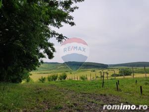 Vila pe un domeniu de 6 hectare in Sauaieu/Bihor - imagine 10