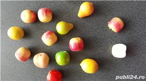 Fructe ornament - imagine 9
