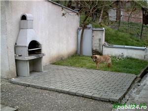 Vand/schimb casa din caramida 200 mp in Sarmasag, jud.Salaj cu garsoniera in Cluj la 45000 euro - imagine 7