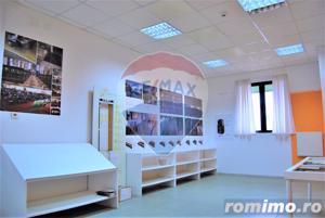 Hală spațiu industrial în Borș [lângă clădirea Comau] - imagine 8
