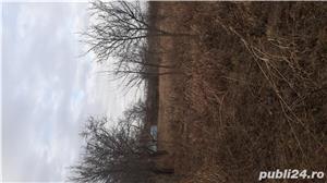 Vand teren, loc de casa - imagine 5