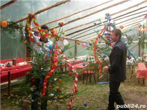 Brazi pentru nuntă zona Buzau. - imagine 1