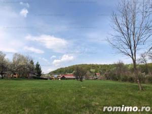 Campina -Mislea, zona pitoreasca - imagine 6