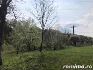 Campina -Mislea, zona pitoreasca - imagine 10