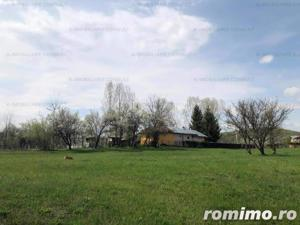 Campina -Mislea, zona pitoreasca - imagine 13