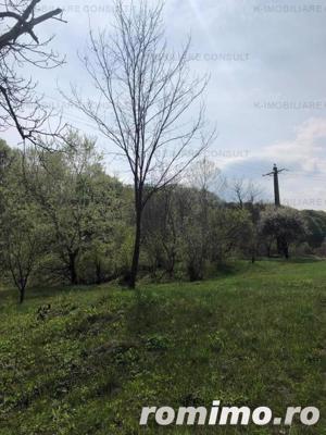 Campina -Mislea, zona pitoreasca - imagine 9