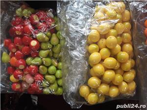 Fructe ornament - imagine 10