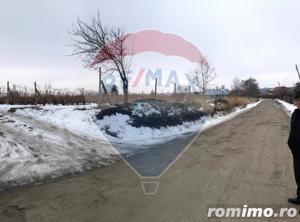 Loturi Teren 2500 mp Urechesti / Drumul DJ205b - imagine 4