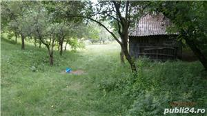 Vand teren intravilan 13075 mp.Corbi-Arges - imagine 2