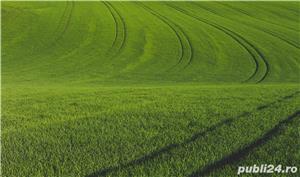 Vând Fermă Agricolă Vegetală.  - imagine 8
