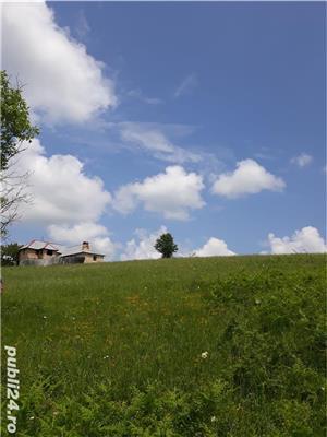 Vând pământ cu conac  - imagine 10