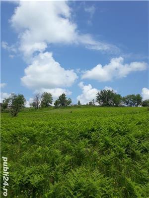 Vând pământ cu conac  - imagine 12