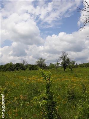 Vând pământ cu conac  - imagine 9