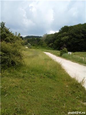 Teren SUPERB deasupra LACULUI Daesti vedere MUNTE,acces PADURE, doar 10KM de Rm.Valcea, peisaj UNIC  - imagine 9