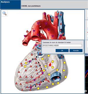 Oferta Iulie 1+1GRATIS Testare prin  Biorezonanta - imagine 4