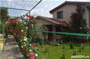 casa in Sarulesti ,judetul Calarasi - imagine 2