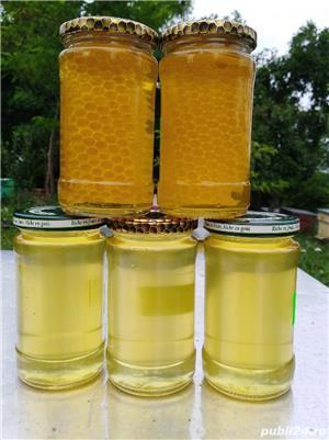 Vând miere de albine  - imagine 4