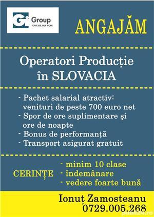 Angajam muncitori necalificati in Slovacia - cazare si masa calda. id30 - imagine 1
