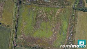 Pescărie în suprafață de 43.000 mp - imagine 9