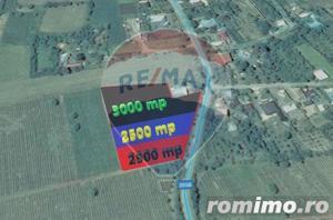 Loturi Teren 2500 mp Urechesti / Drumul DJ205b - imagine 1