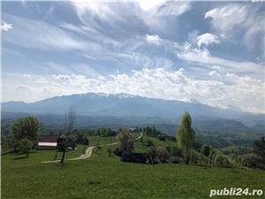Teren 5300 zona Bran-Moeciu, satul Pestera - imagine 3