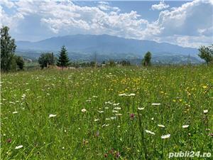 Teren 5300 zona Bran-Moeciu, satul Pestera - imagine 10