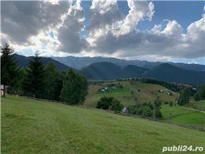 Teren 5300 zona Bran-Moeciu, satul Pestera - imagine 1