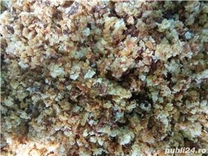 Capaceala de faguri - imagine 2