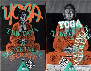 6 căr i despre Yoga - imagine 3