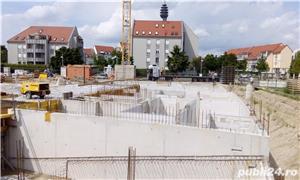 Zidari in Germania - imagine 4