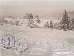 Vand teren zona Glajerie ,Rasnov, Brasov - imagine 4