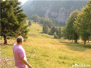 Teren Arges-Cheile Dambovicioarei 25000 mp.cu izvor de apa plata - imagine 1