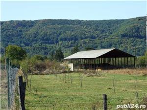 Vanzare fosta ferma animale - comuna Mihaiesti, judet Arges - imagine 3