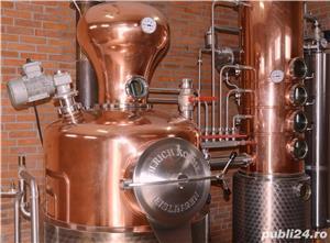 TUICA SCORILO-distilat din pere Williams-2013 Premium Quality cu para in interiorul sticlei - imagine 4