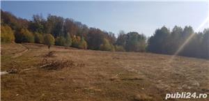 teren arabil intravilan sat Damis - imagine 3