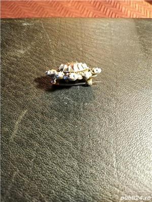 brosa diamante schimb - imagine 2