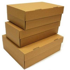 Cutii pentru pantofi  - imagine 4