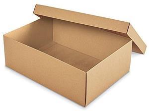 Cutii pentru pantofi  - imagine 3