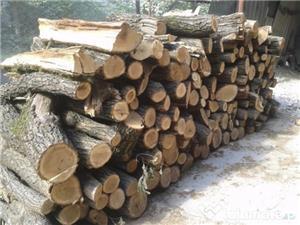 Vand lemn de foc esenta tare ( salcam/stejar ) din depozit autorizat langa Craiova. Pret 450 LEI /m3 - imagine 2