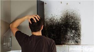 Eliminam mucegaiul , bacteriile si mirosurile din casele si masinile dumneavoastra. - imagine 1