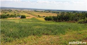 Proprietate de vanzare comuna Ionesti, sat Marcea, jud.Valcea - imagine 8