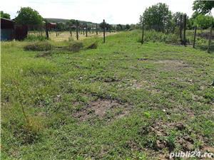 Teren Biharia 1446mp, zona verde linistita - imagine 4