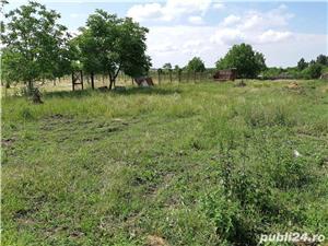 Teren Biharia 1446mp, zona verde linistita - imagine 1