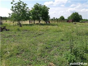 Teren Biharia 1446mp, zona verde linistita - imagine 9
