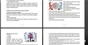 Lucrari Licenta,Mastere,Doctorate,Disertatii,Economie,IT,AMG,Farmacie,Asistenti Medicali Generalisti - imagine 1