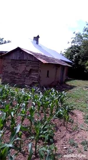 Casa cu teren Dridu-Snagov jud. Ialomita - imagine 3