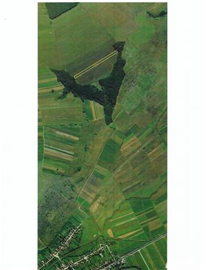 Teren agricol extravilan - imagine 3
