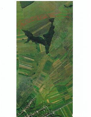 Teren agricol extravilan - imagine 1