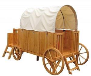 Trasura-Casuta din lemn JESSY 2857 Dimensiuni pachet :120 x 80 x 40 cm 4 368 lei - imagine 2